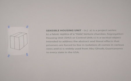 Sensible Housing Unit: detail